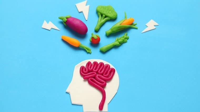 Mind Diet Brain Healthy Foods