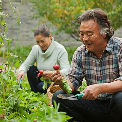 Gardening is exercise for seniors