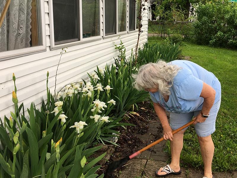 Linda gardening flowers
