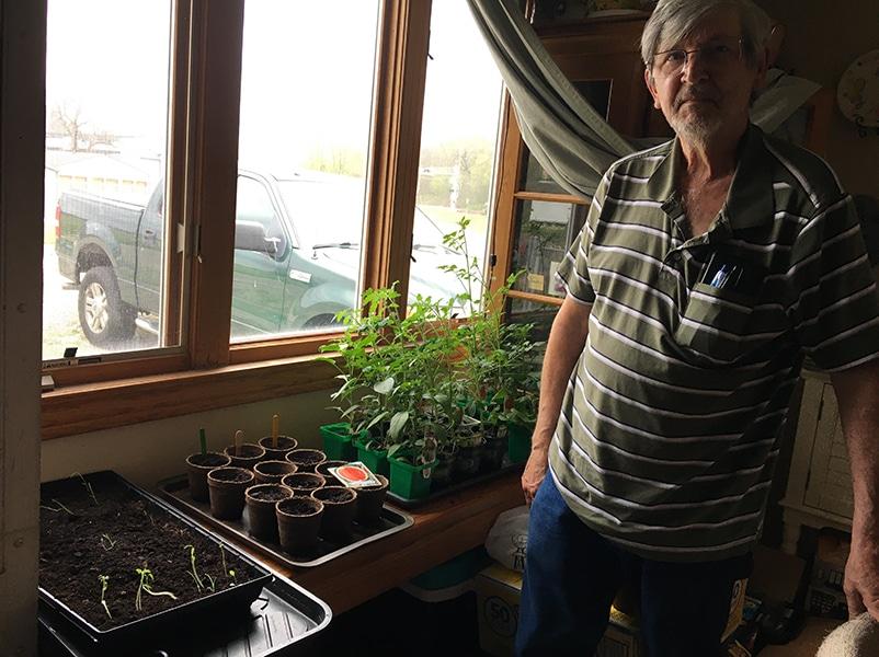 Richard gardening vegetables